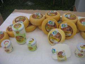 Quesos y yogures La Sierra