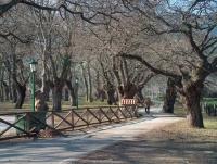 Parque de San Martín de Toranzo